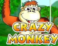 Crazy Monkey или Обезьянки – так весело еще не игралось!